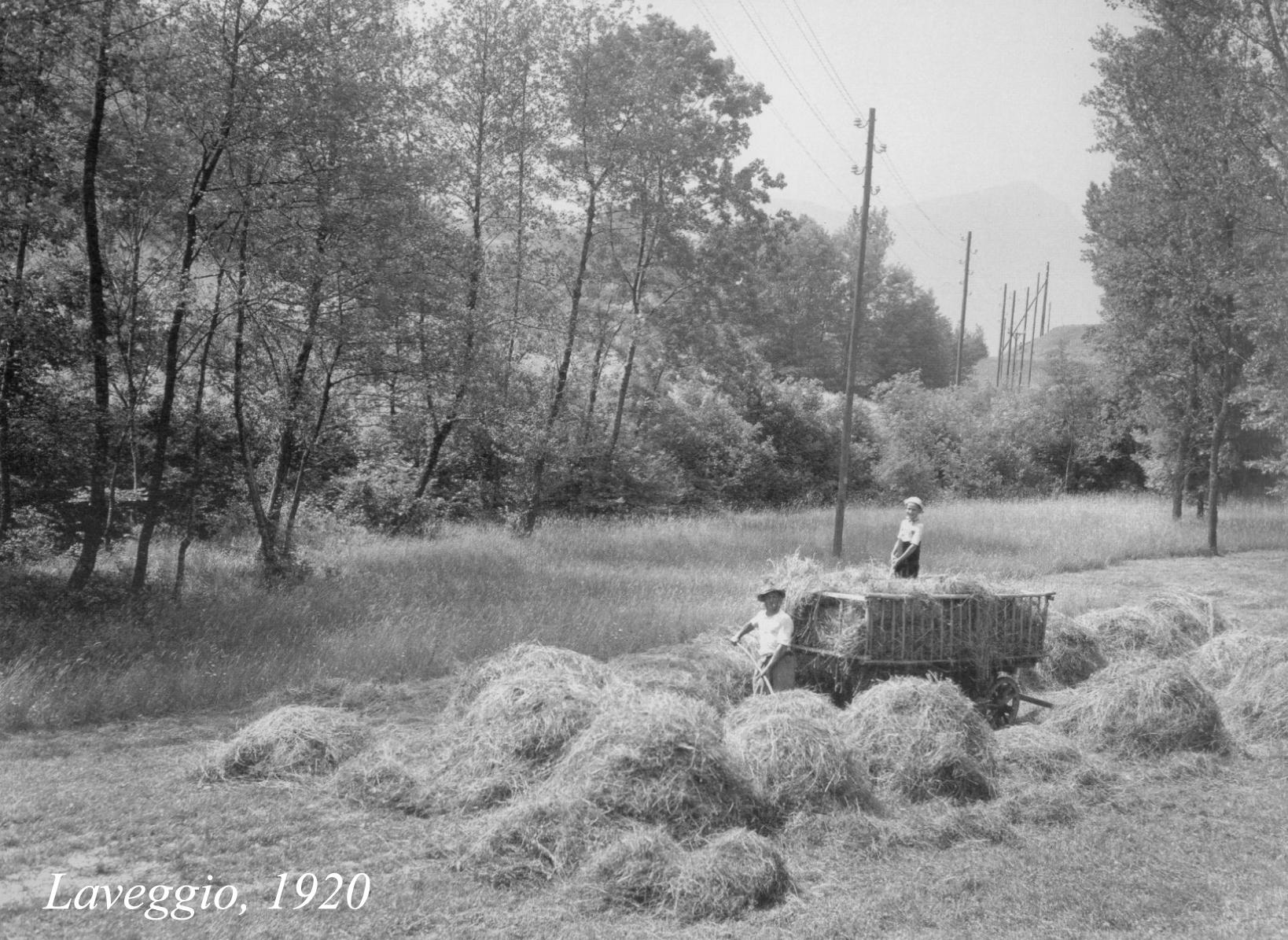 1920-Scheuenmeier-Laveggio